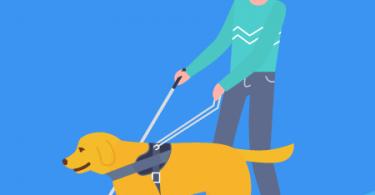 Cão: o melhor amigo do Homem